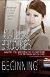 Beginning (PAVAD: FBI Romantic Suspense Book 1)