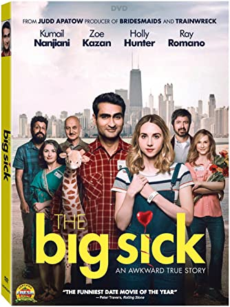 Image result for Big sick