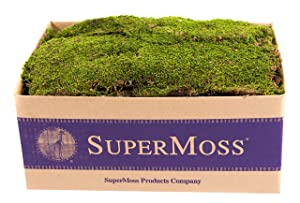 SuperMoss (21508) Preserved Sheet Moss, Fresh Green, 5 Pounds