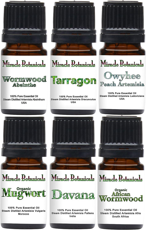 Miracle Botanicals Artemisia Essential Oil Sampler - 100% Pure Therapeutic Grade - 6(5ml)