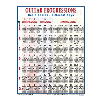 Amazon.com: Walrus Productions Guitar Progressions Chord Chart ...