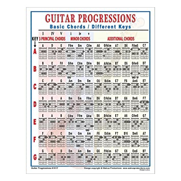 Amazon.com: Walrus Productions Guitar Progressions Chord Chart ...