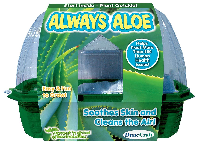 tomamos a los clientes como nuestro dios Dunecraft Always Always Always Aloe Science Kit by DuneCraft  oferta especial