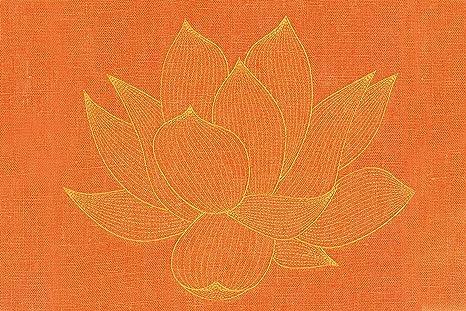 Pranamat ECO Esterilla de masaje (Naranja/Naranja): Amazon.es: Salud y cuidado personal
