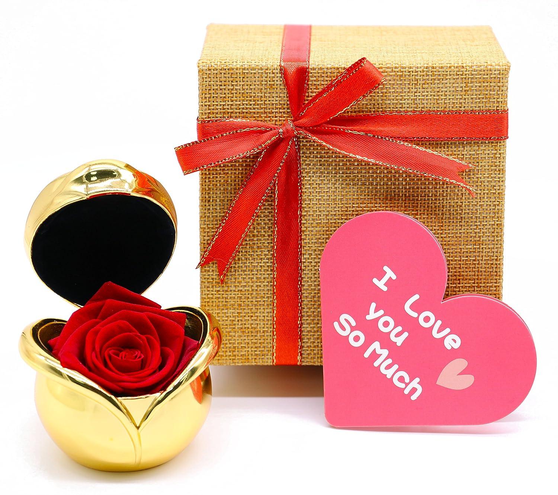 sGift母の日ギフトfor Momから娘、Preserved RosesハンドメイドReal Rose withグリーティングカード誕生日、ギフトの妻から夫、クリスマスギフトのアイデアレディースおばあちゃん、姉妹、Aunty B07BGYSC4Z