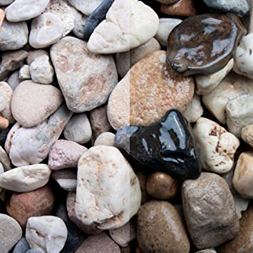 Piedras de sílice – Grava de jardín 1 K hasta 1000 kg, incluye entrega decoración de jardín, piedras decorativas: Amazon.es: Bricolaje y herramientas