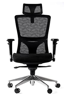 WINMI Mesh Ergonomic Office Desk Chair High Back Executive Chair with  Adjustable Synchro and Lumbar Support