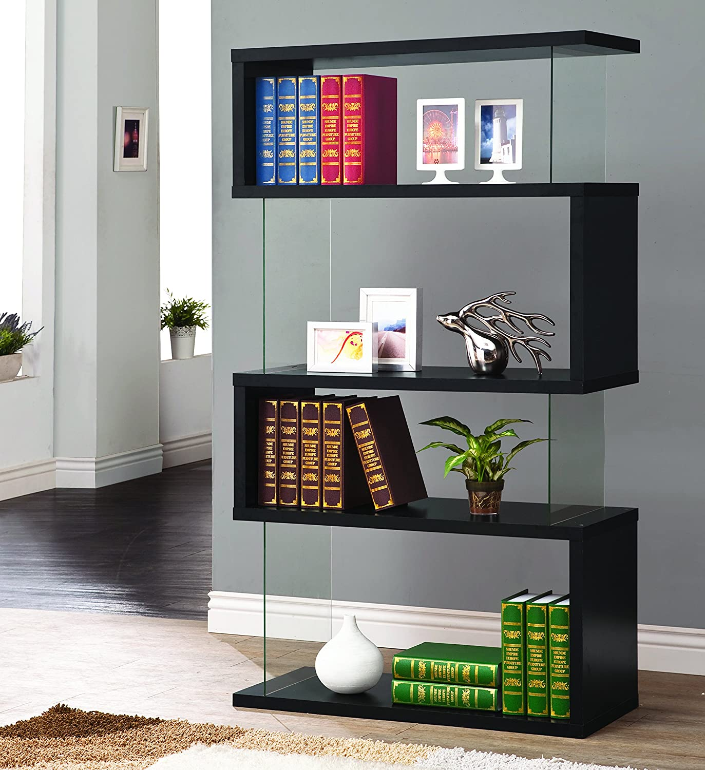 Asymmetrical Snaking Bookcase Black and Clear