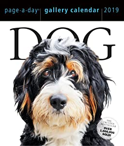 "Dog Page-A-Day Gallery Desk Calendar 2019 [6.25"" x 7.25"" Inches]"
