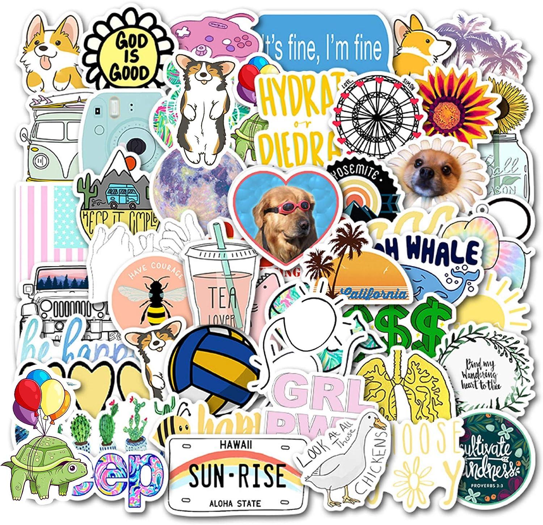 VSCO Stickers for Laptop,Water Bottles,Hydro Flask,Phone,Suitcase,Fridges (50pcs)