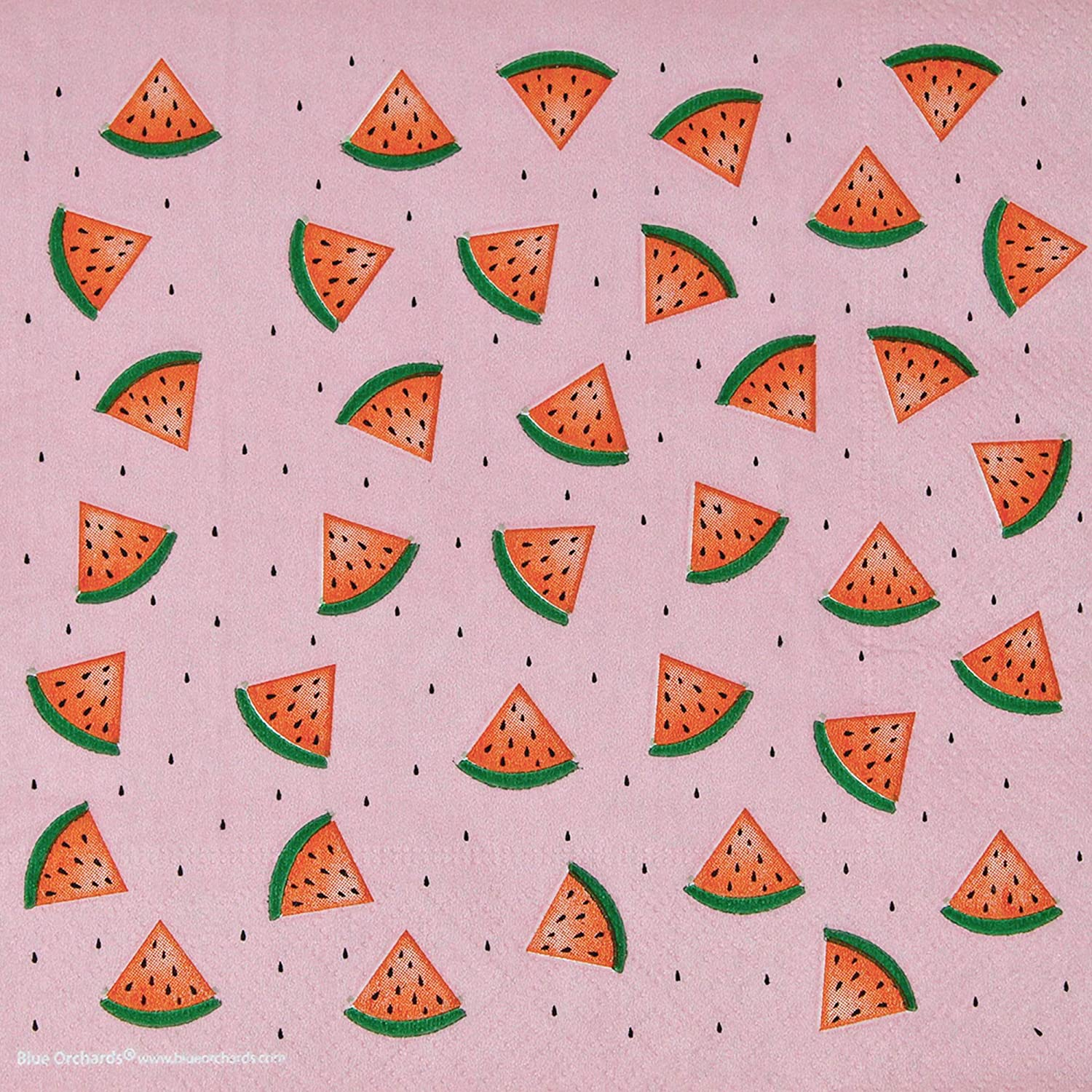 113+ Pieces for 16 Guests! Watermelon Birthday Blue Orchards Watermelon Napkins Watermelon Plates Watermelon Party Supplies Packs Watermelon Cups