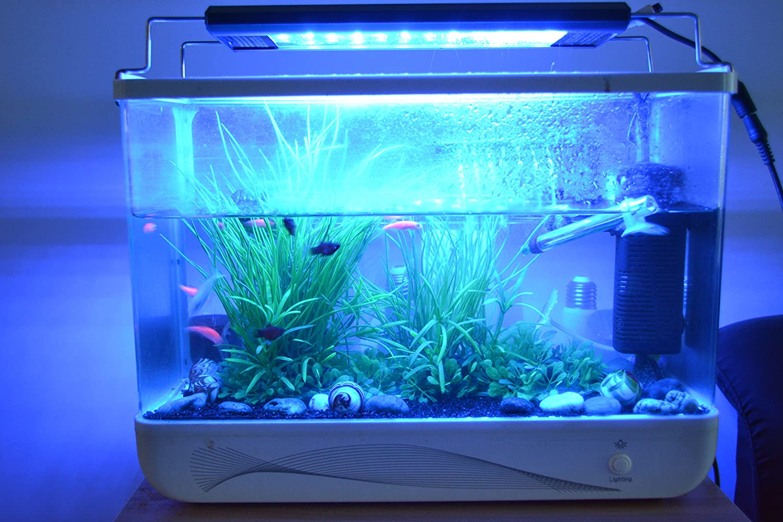 Hi-lumen 115 cm 30 W 3 33 šV de aluminio de alta calidad LED Acuario de iluminación con luminaria dulce de agua de mar de alta calidad de la lámpara de ...