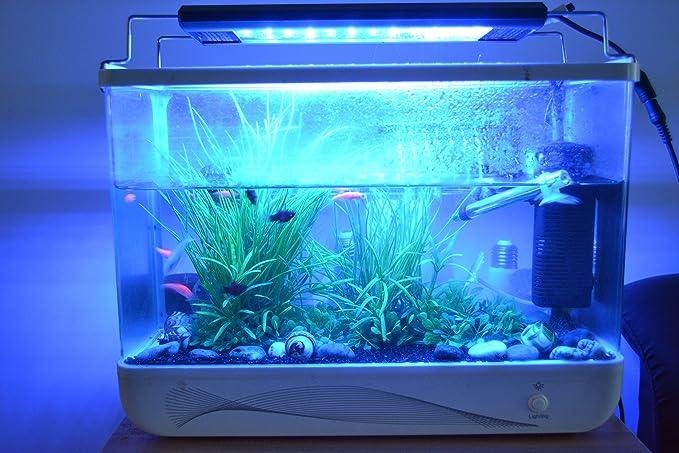 Plafoniera Led Per Acquario Acqua Dolce : Rq illuminazione per acquari cm w struttura in