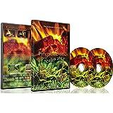 DVD de relaxation - Cheminée et Eau Douce.