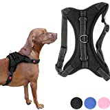 Zenify Pets Dog Harness - Chest Control Grab Adjustable Reflective for Medium Dogs (Black, Medium)