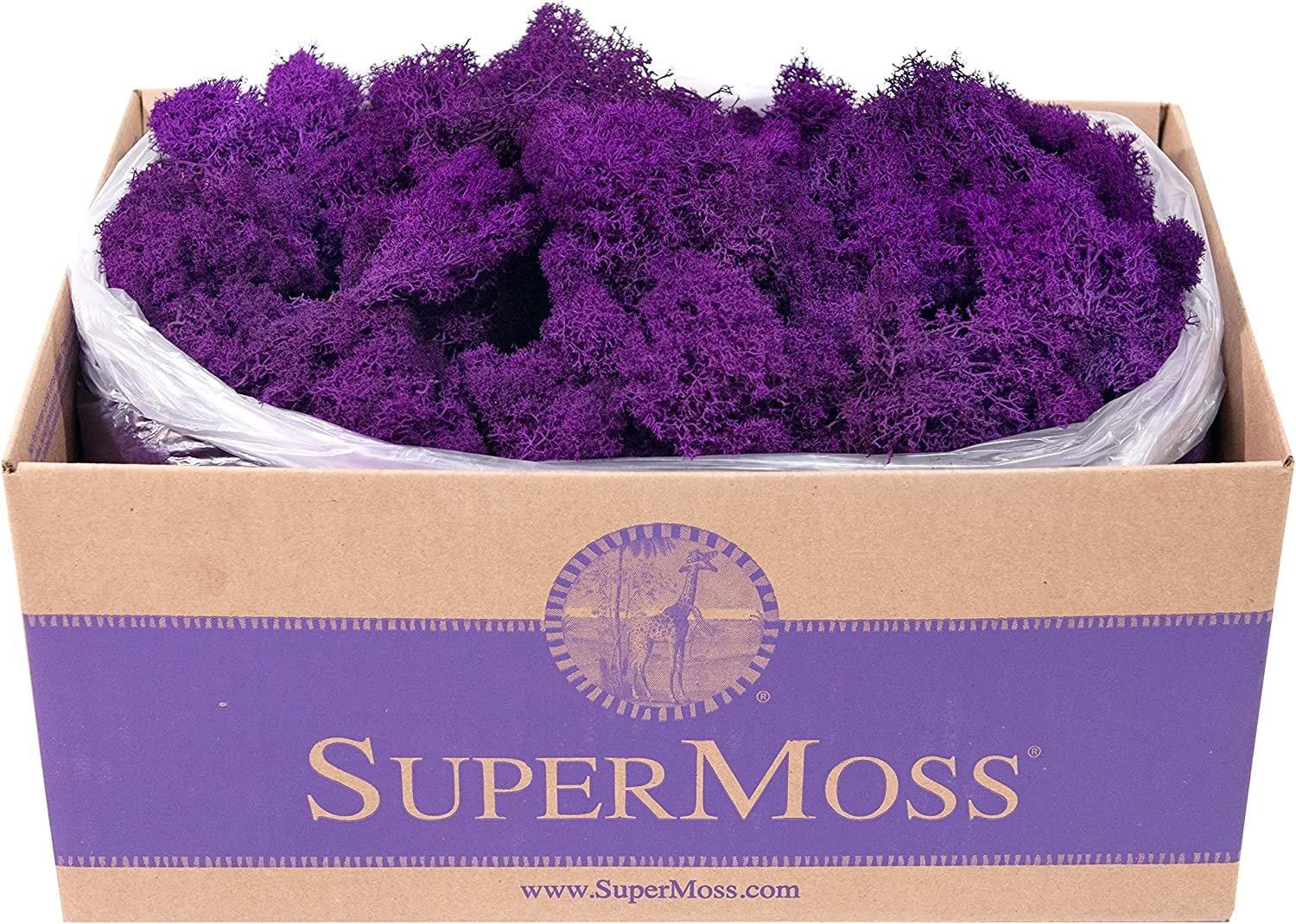 SuperMoss Natural 3lbs Reindeer Moss Preserved 21742