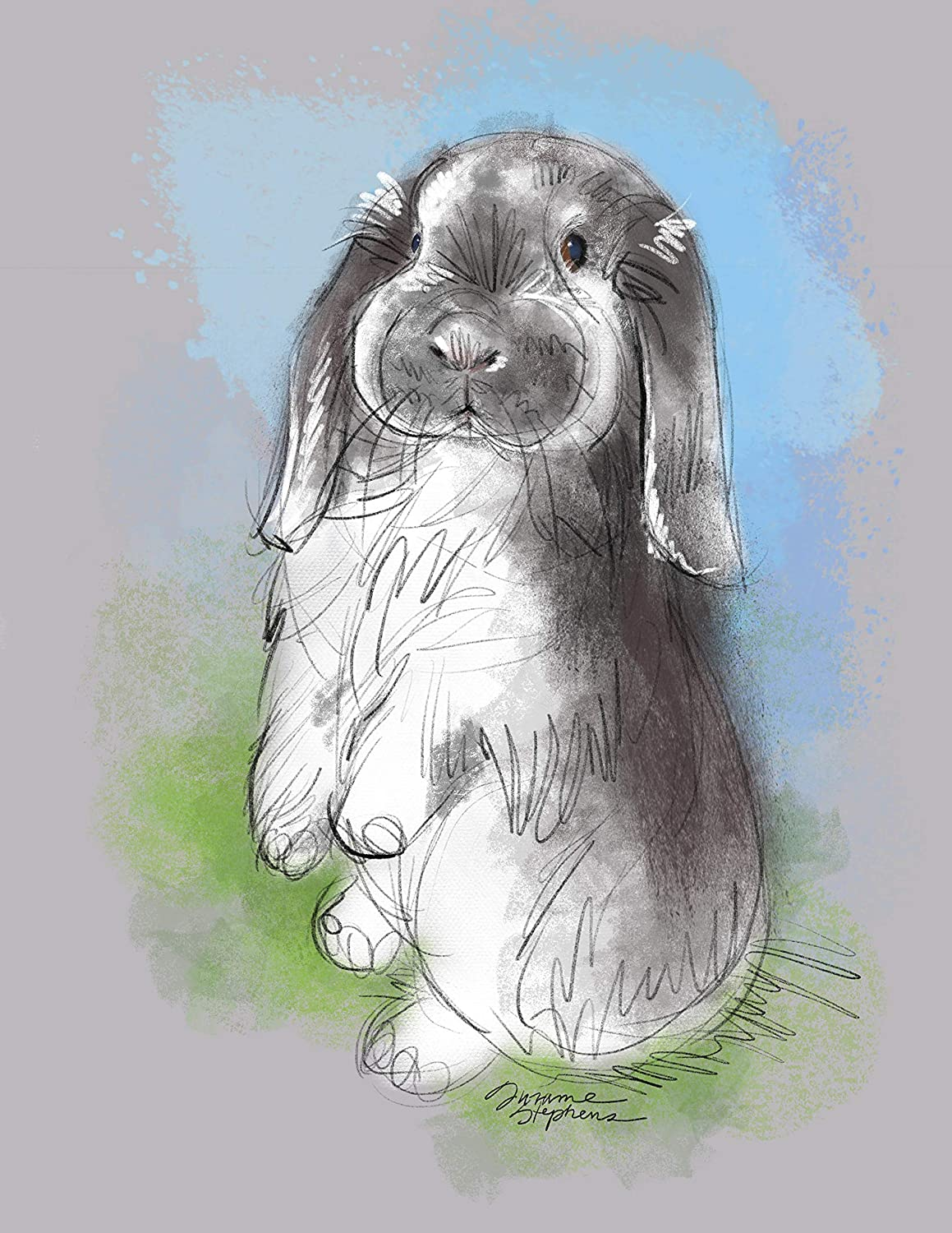 Holland Mini Lop Bunny Rabbit Gift 8 5x11 Art Print Of Painting By Suzanne Stephens Handmade