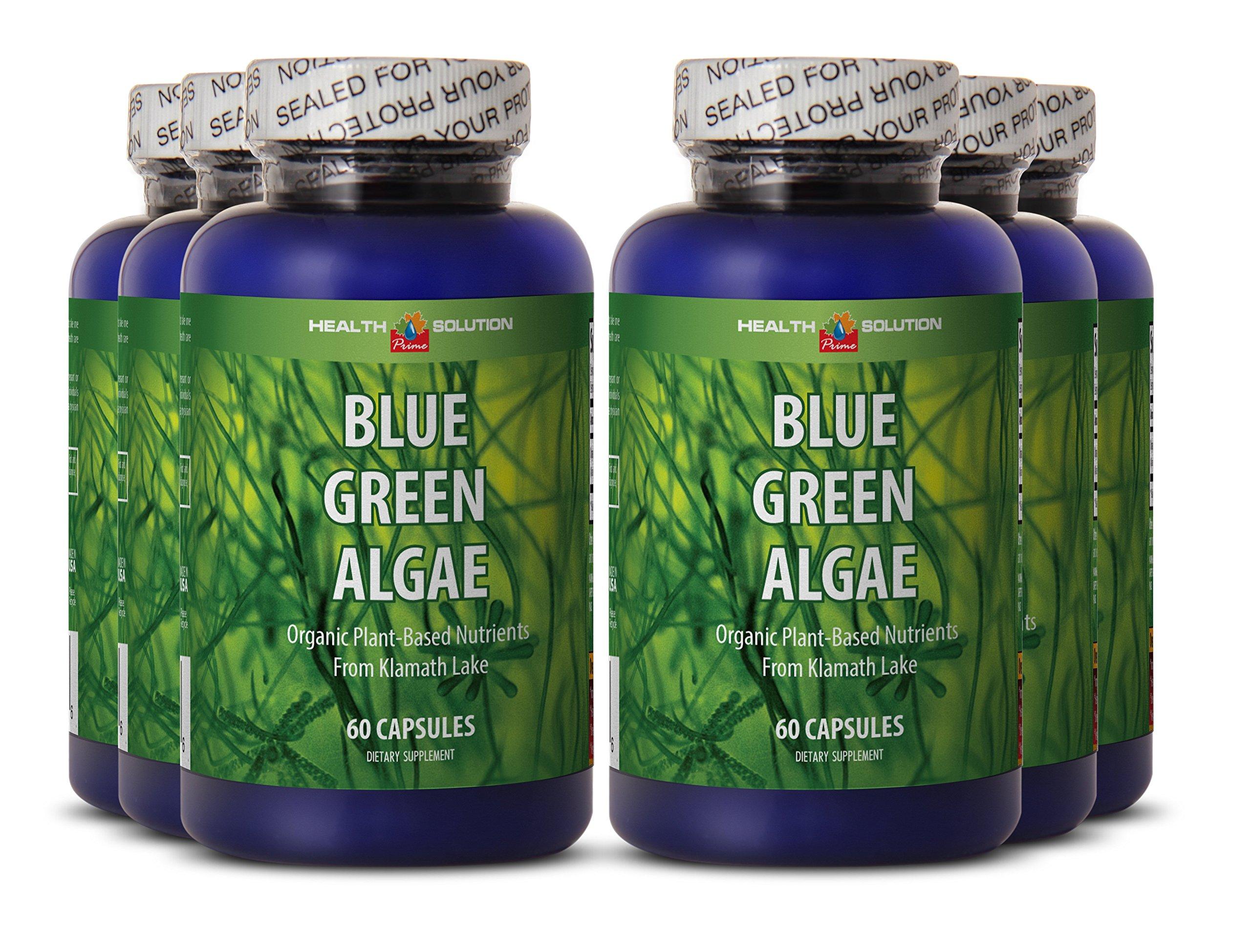 Blue algae supplement - BLUE GREEN ALGAE - prevent candida overgrowth (6 bottles) by Health Solution Prime