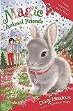 Pippa Hoppytail's Rocky Road: Book 21 (Magic Animal Friends) (English Edition)
