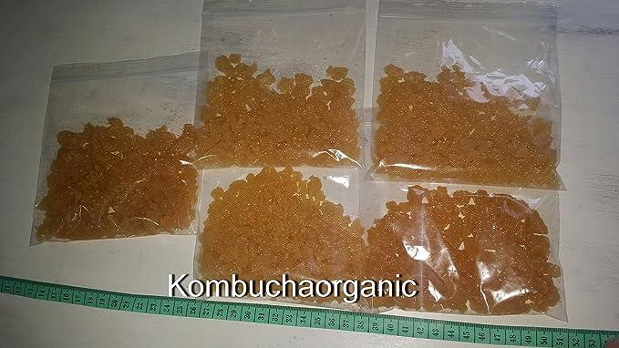 Culturas orgánico, 3 cristales de agua, leche kéfir granos & Kombucha, Mediana): Amazon.es: Belleza