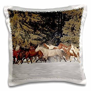 Amazon.com: 3dRose Danita Delimont – caballos – Manada De ...