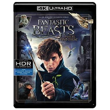 Fantastic Beasts and WhereToFind (UHDBD)