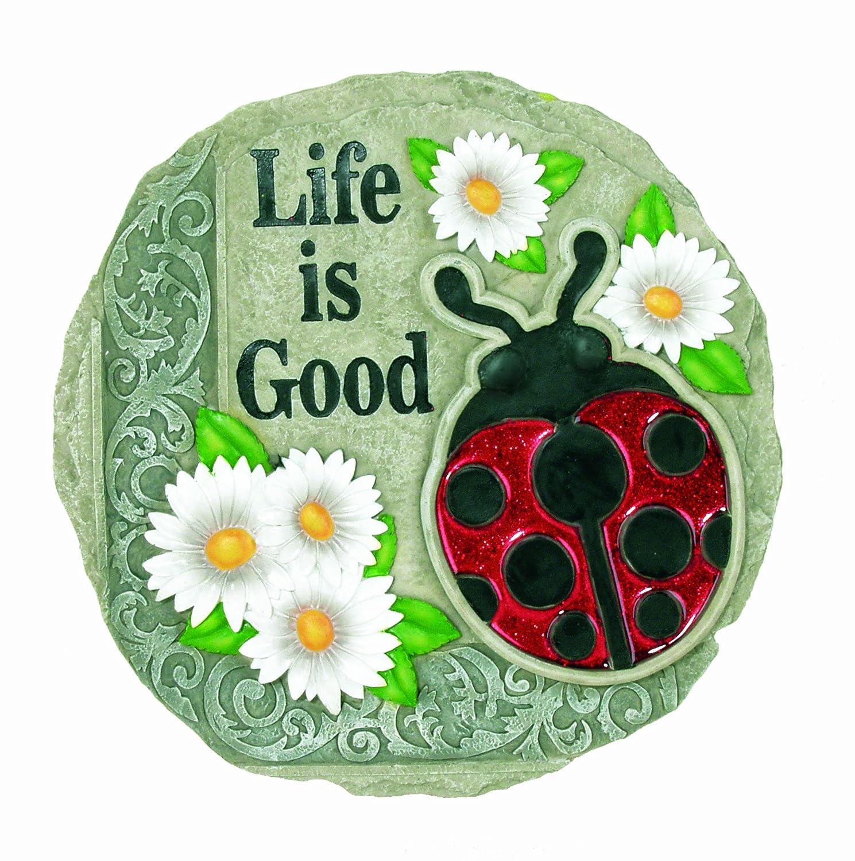 Amazon.com : Spoontiques Ladybug Stepping Stone : Outdoor Decorative ...