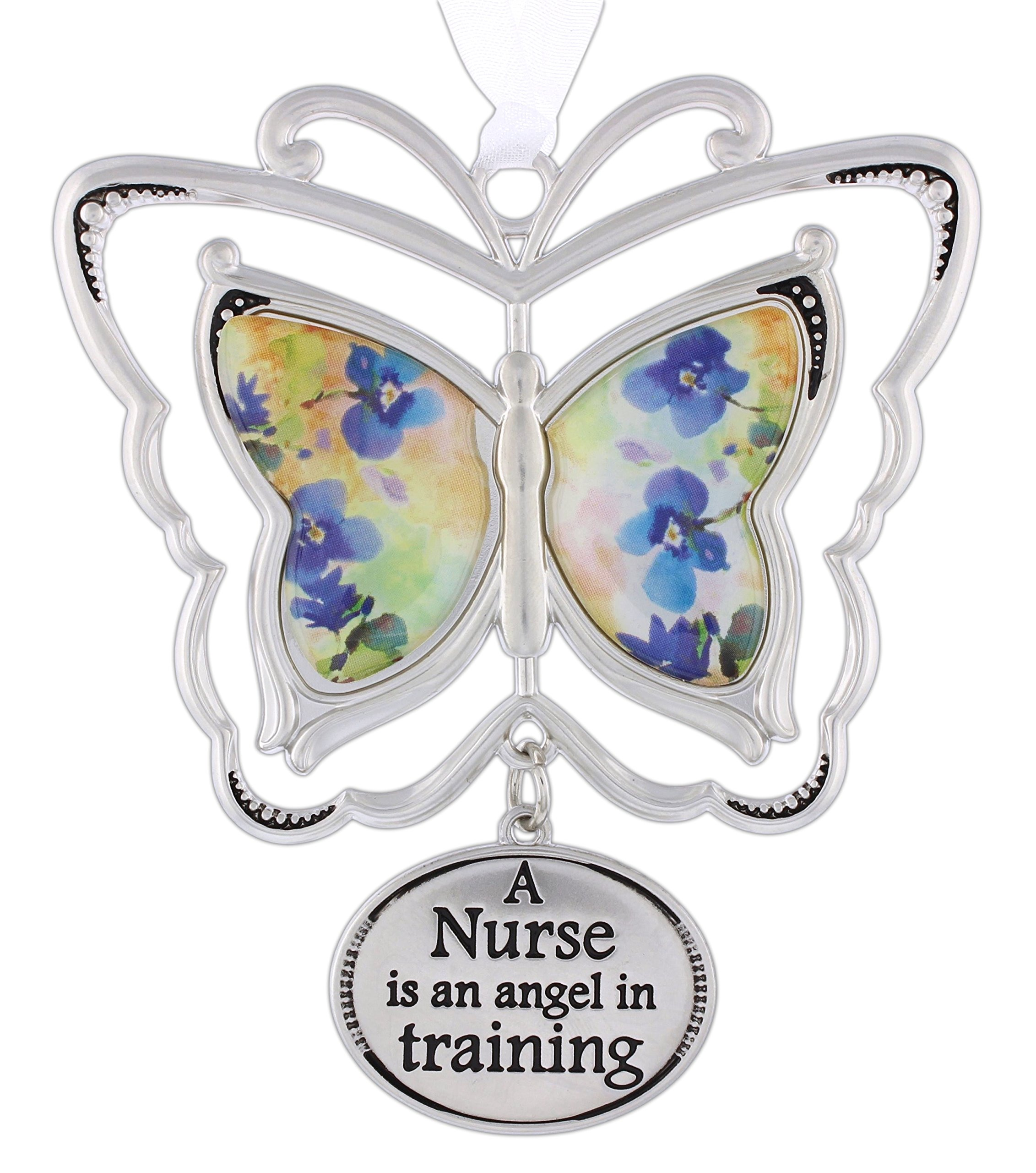 Ganz Home Decor Spring 3D Butterfly Wishes Ornaments (Nurse)