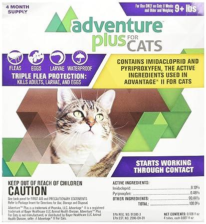 Amazon.com: Durvet aventura plus para gatos 4-Pack: Mascotas