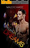 Stolen Dreams: Stolen Dreams Fortis Security Series (English Edition)