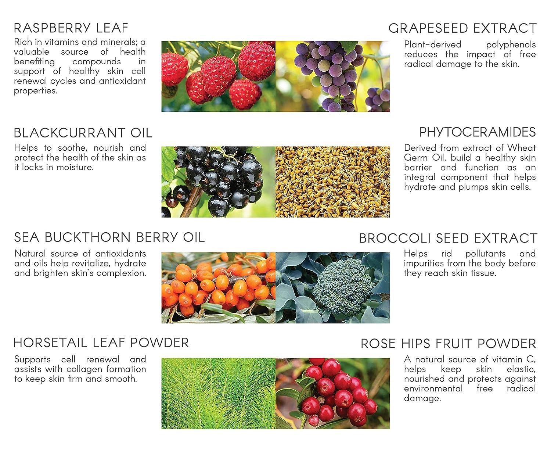 Dermal Repair Complex & Skin Vitamins Supplement Program - Natural Collagen  Vitamins