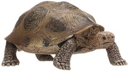 amazon com schleich giant turtle schleich toys games