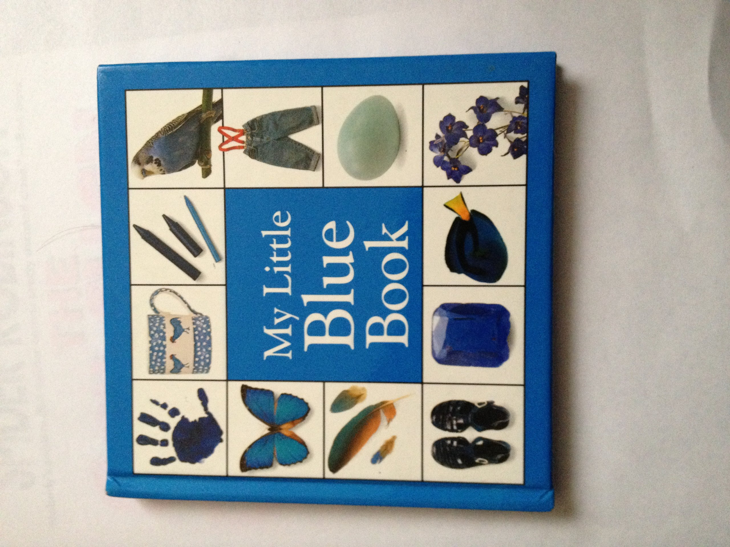 Amazon.com: My Little Blue Book (My Little Color Library ...