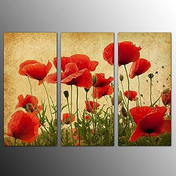 Amazon.com: KuyiArt- 3 Panels, Flower, Corn Poppy, Canvas Wall Art ...