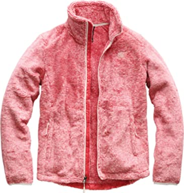 169c8237b0049 The North Face Women's Osito 2 Jacket