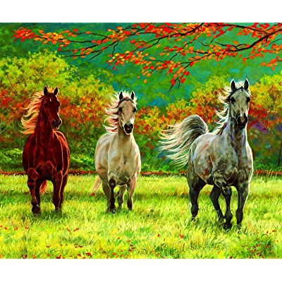 Autumn Meadow 500 pc Jigsaw Puzzle by SunsOut: Toys & Games