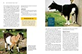 Storey's Guide to Raising Dairy Goats, 5th Edition: Breed Selection, Feeding, Fencing, Health Care, Dairying, Marketing