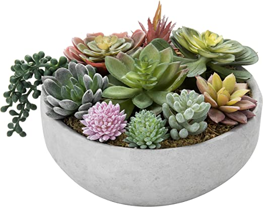 Amazon Com Mygift 8 Inch Artificial Succulent Plant Arrangement
