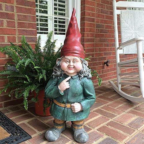 Gnomes of Toad Hollow