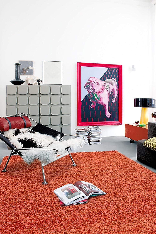 Turquesa alfombras alfombras y moquetas - Alfombras cocina amazon ...