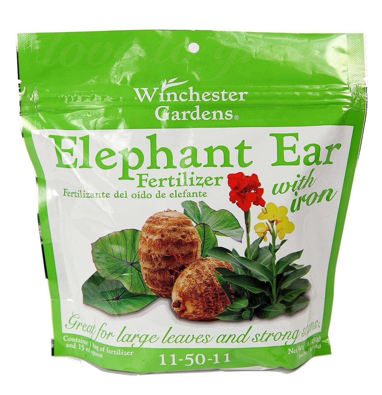 Amazon.com : Winchester Gardens Elephant Ear Fertilizer Bag, 1 Pound :  Begonia Plant Food : Garden U0026 Outdoor