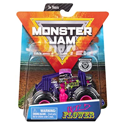 Monster Jam Hot Wheels 1:64 Scale Wild Flower, Purple/Pink: Toys & Games