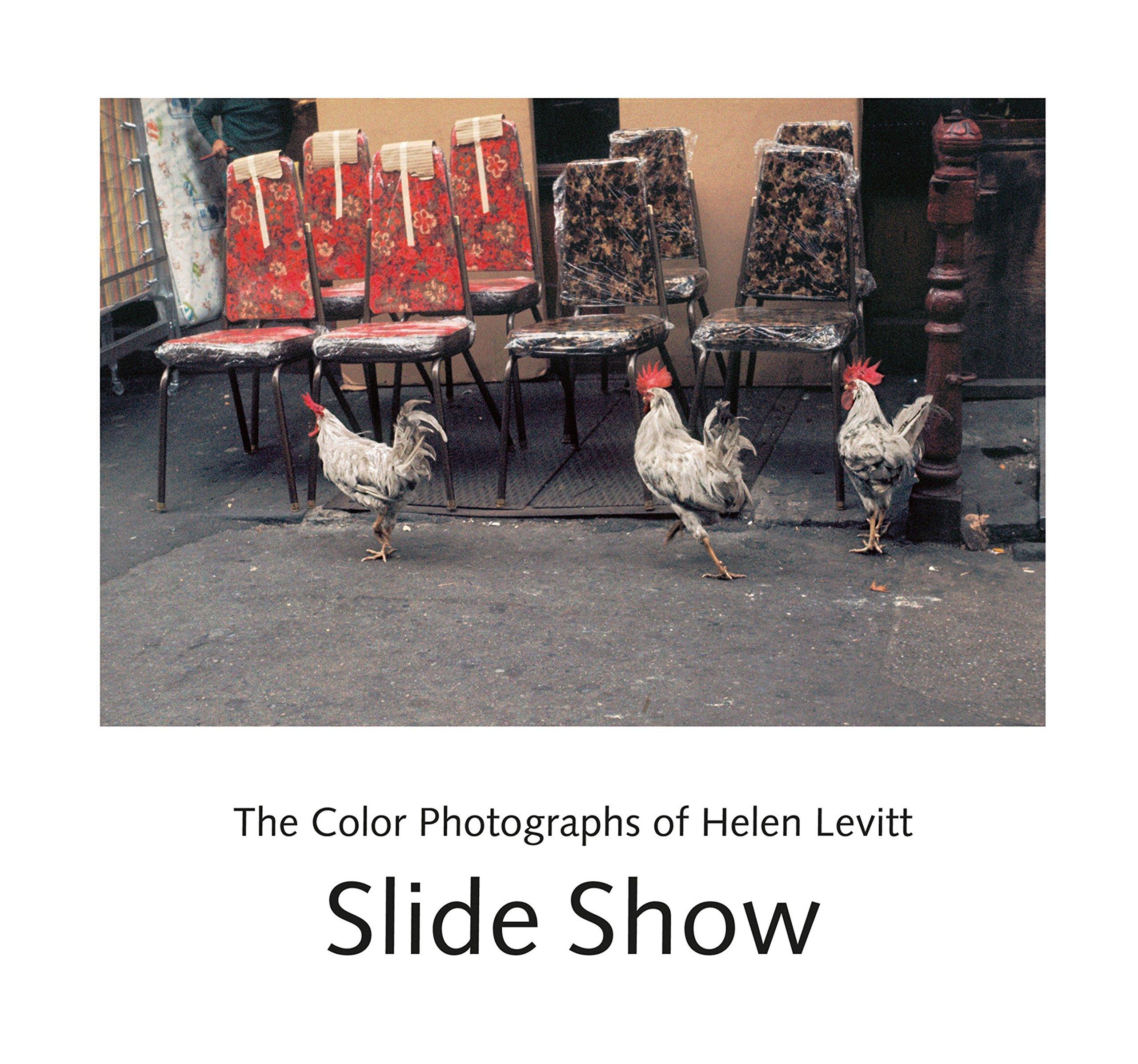 Download Slide Show: The Color Photographs of Helen Levitt pdf epub