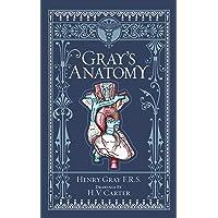 Gray's Anatomy (Barnes & Noble Collectible Classics: Omnibus Edition)