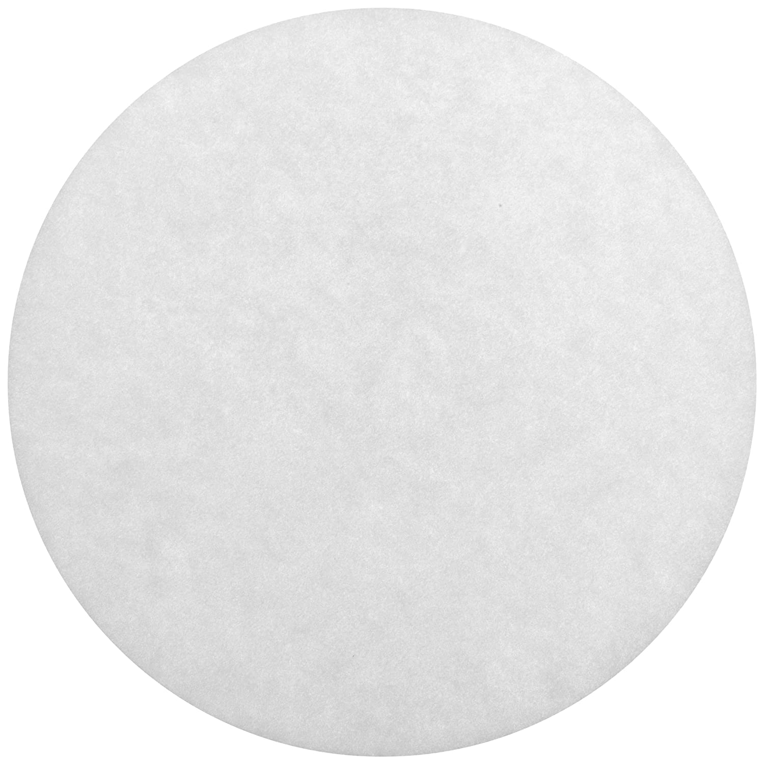 Whatman 800284 Polycarbonate Hydrophillic Nuclepore Track-Etched Membrane Filters, 19mm Diameter, 0.8 Micron (Pack of 100)