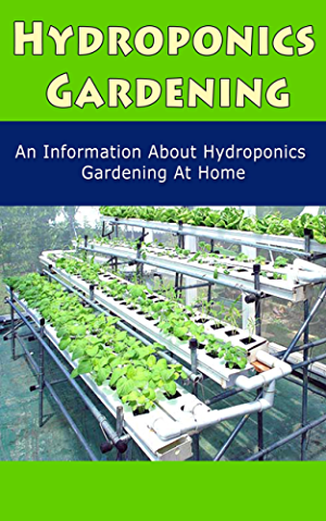 Hydroponics Gardening: An Information About Hydroponics Gardening at Home