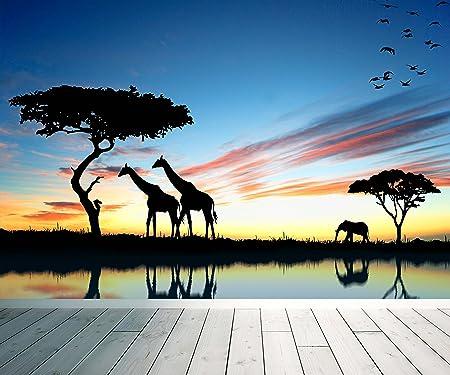 African Safari Wall Mural Photo Wallpaper Relax Calm Sunset XX