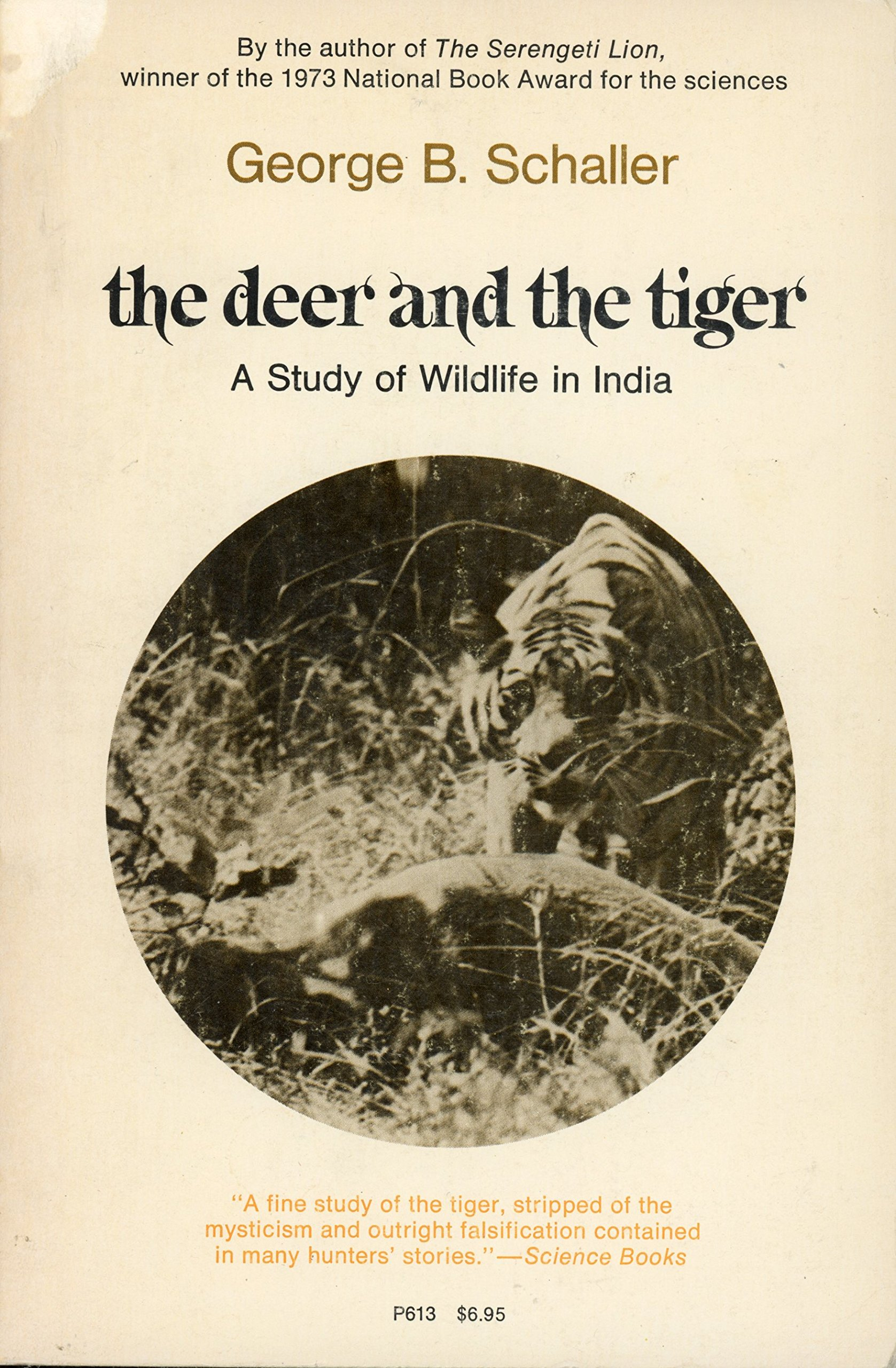 the tiger and the deer