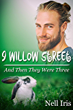 And Then They Were Three (9 Willow Street Book 1)