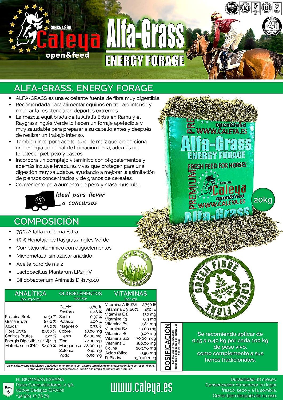 Open&Feed Alfa-Grass 20 Kg + Viruta Extra (Palet 12 + 6 Unidades): Amazon.es: Productos para mascotas